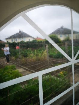 Blundell Road Allotments 2