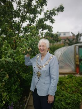 Blundell Road Allotments 4